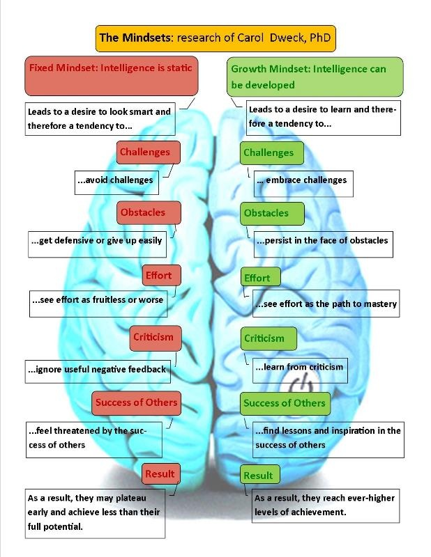Brain - fixed vs. growth mindset