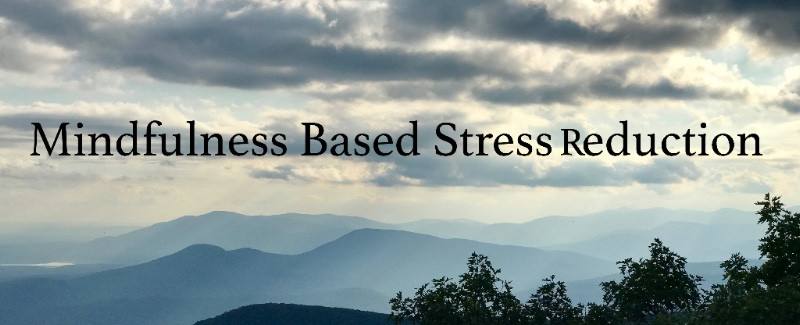 MBSR 8 week course qualified through UMASS Medical School - Center For Mindfulness