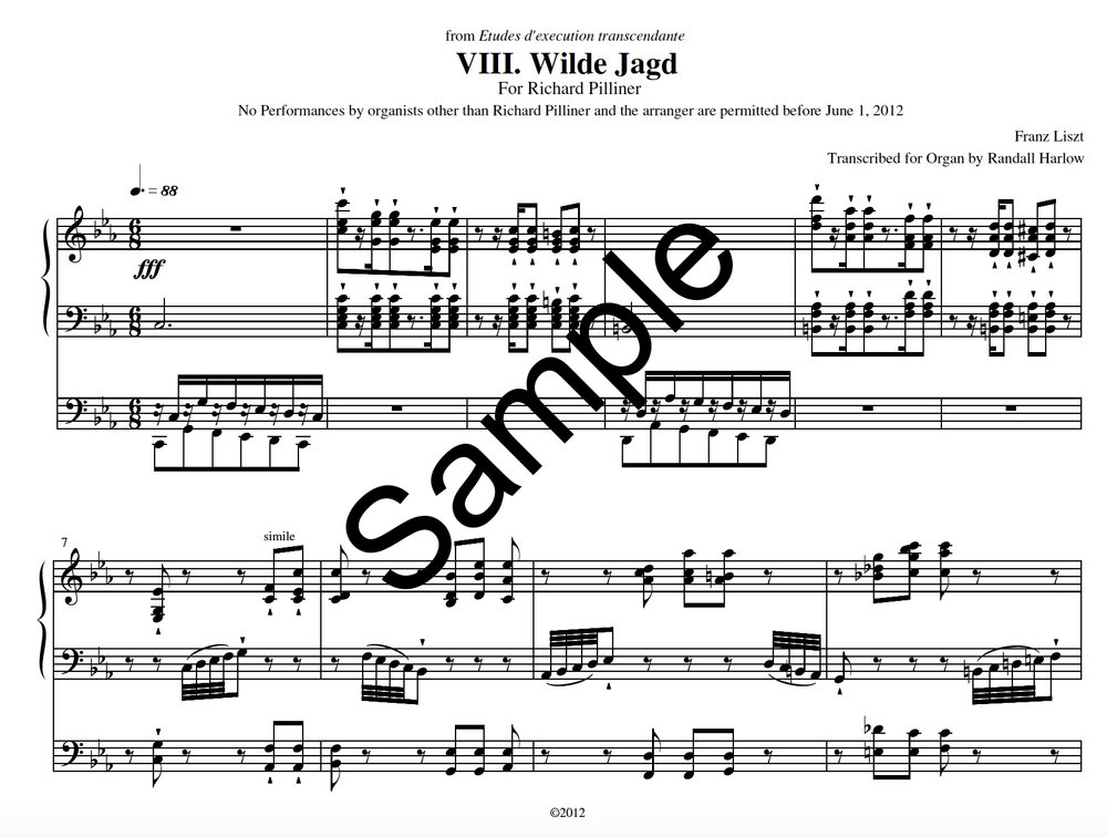 Liszt Transcendental Etudes Wilde Jagd transcribed for organ