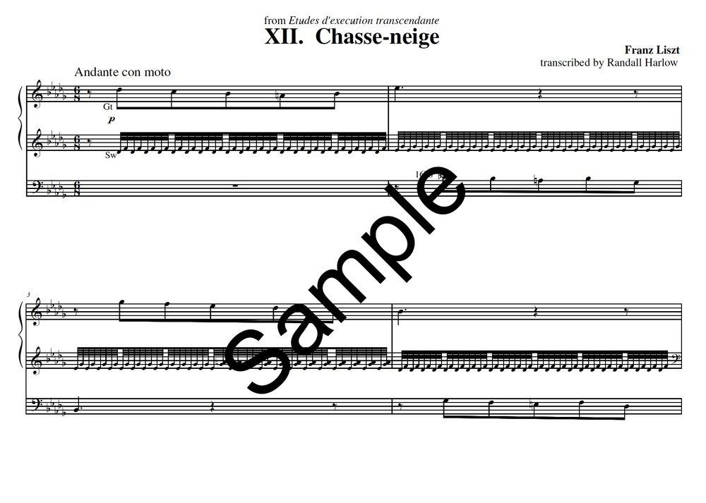 Liszt Transcendental Etudes Chasse-Neige transcribed for organ