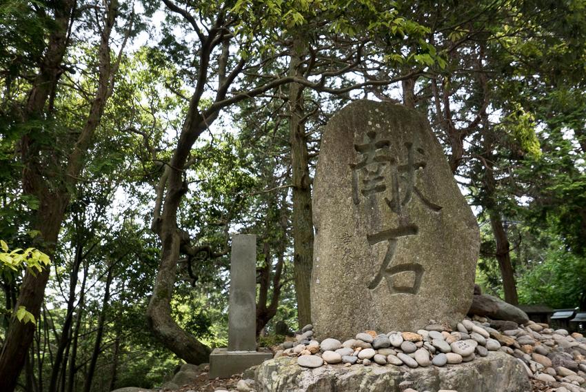 Acorn-Eikaiwa-OwariFuji-2.jpg