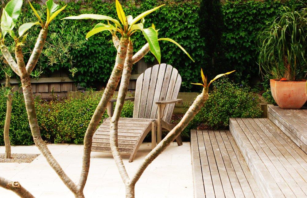 seat and frangipani