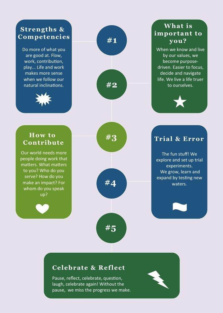 Conscious Careerist Coaching Framework