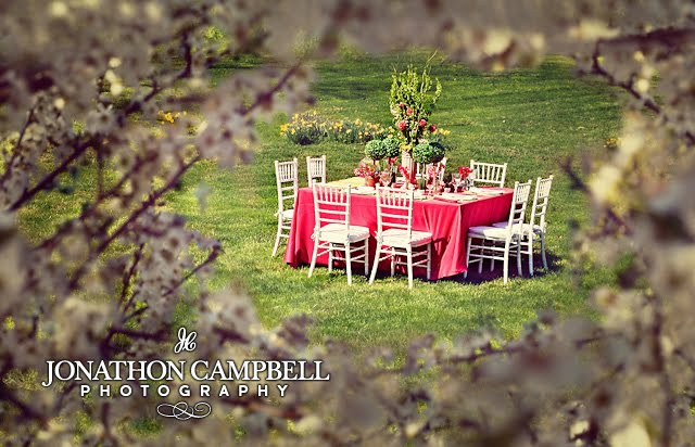 Dogwoods and Bridesamid luncheon