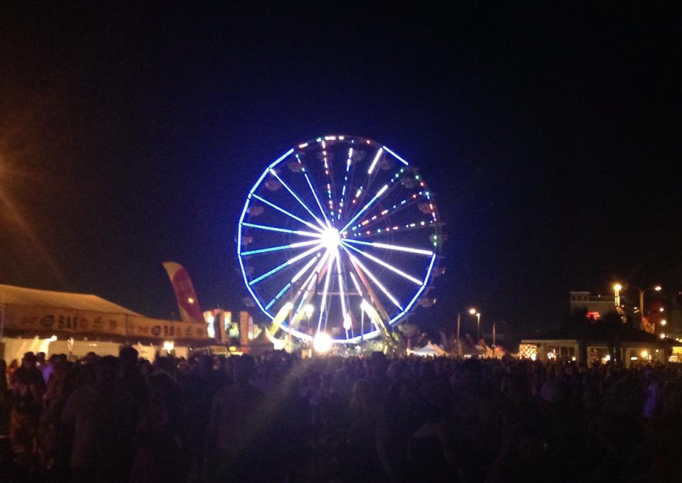The Ferris Wheel, Hangout Music Fest