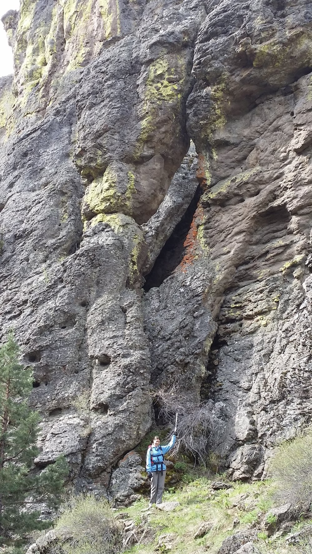A giant buttress arch (can you see it?)