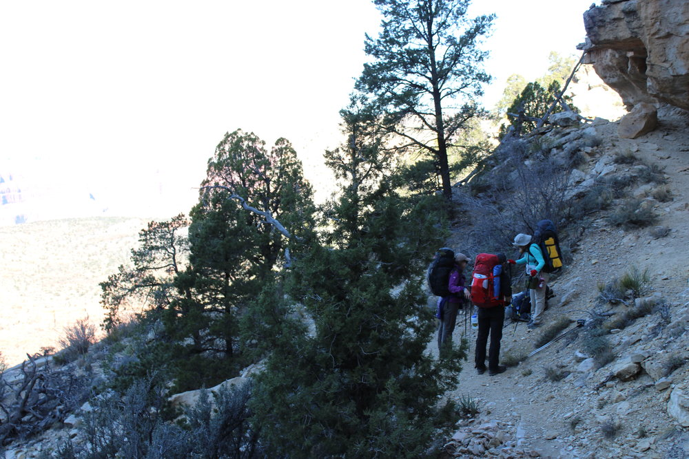 Our group pauses in the Coconino Layer