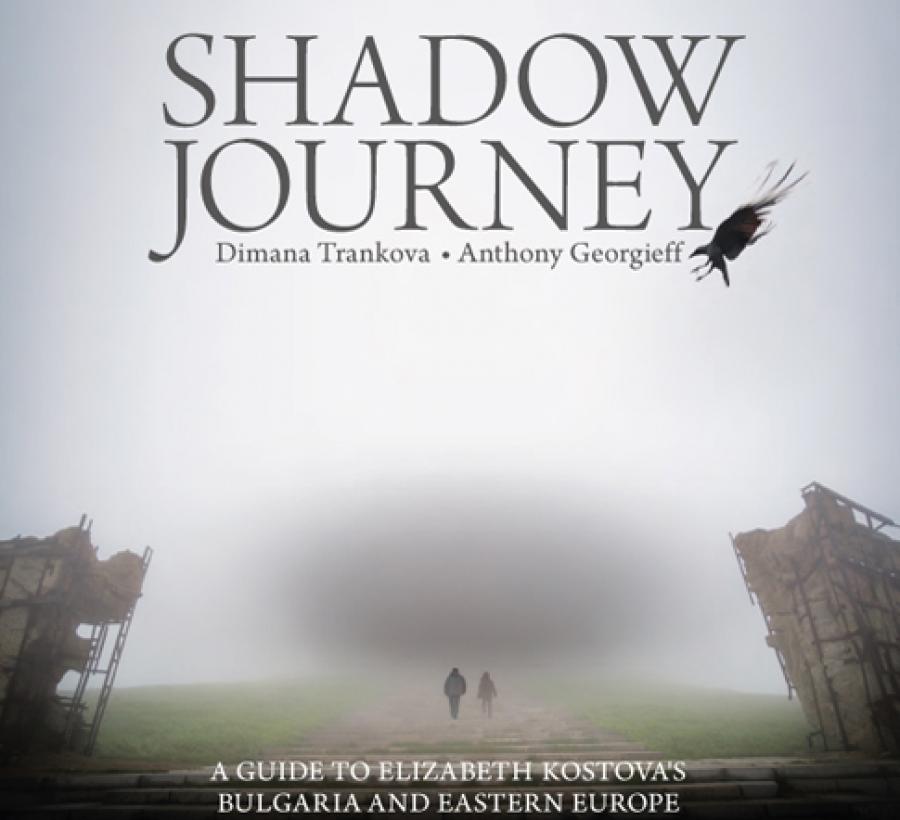 shadow journey.jpg
