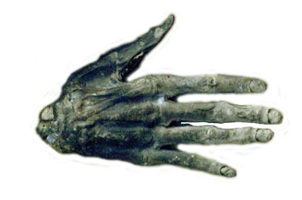 Hand of Glory. Image courtesy of  Whitby Museum