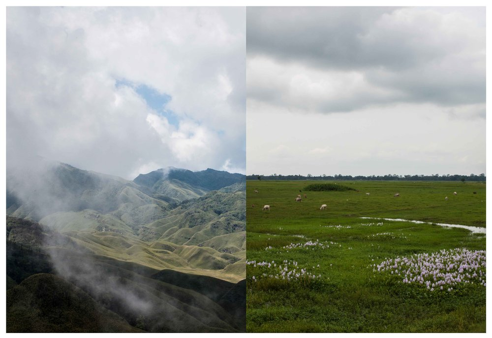 One of the things that fascinates me about places is how the geography quickly changes every few miles or so, drastically that too. Nagaland and Assam share their border, yet neither has any semblance whatsoever to each other. Here's a visual combination of the two.  Taken at Dzukou Valley, Nagaland and Majuli Island, Assam.