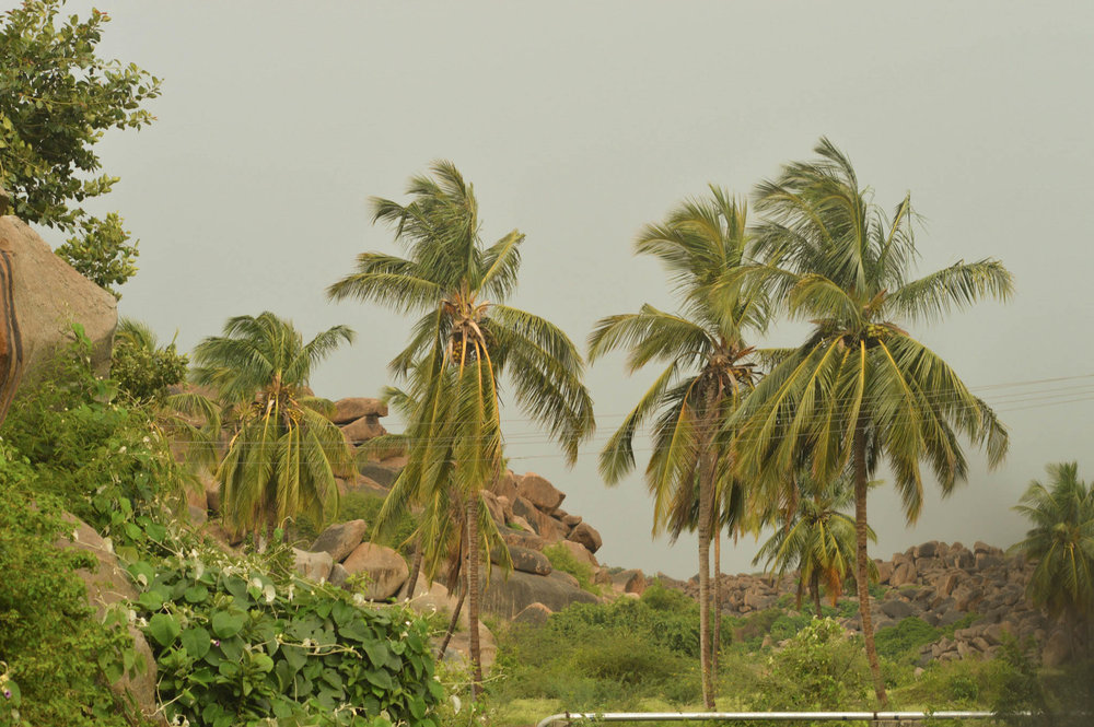 Hampi, Oh so green!