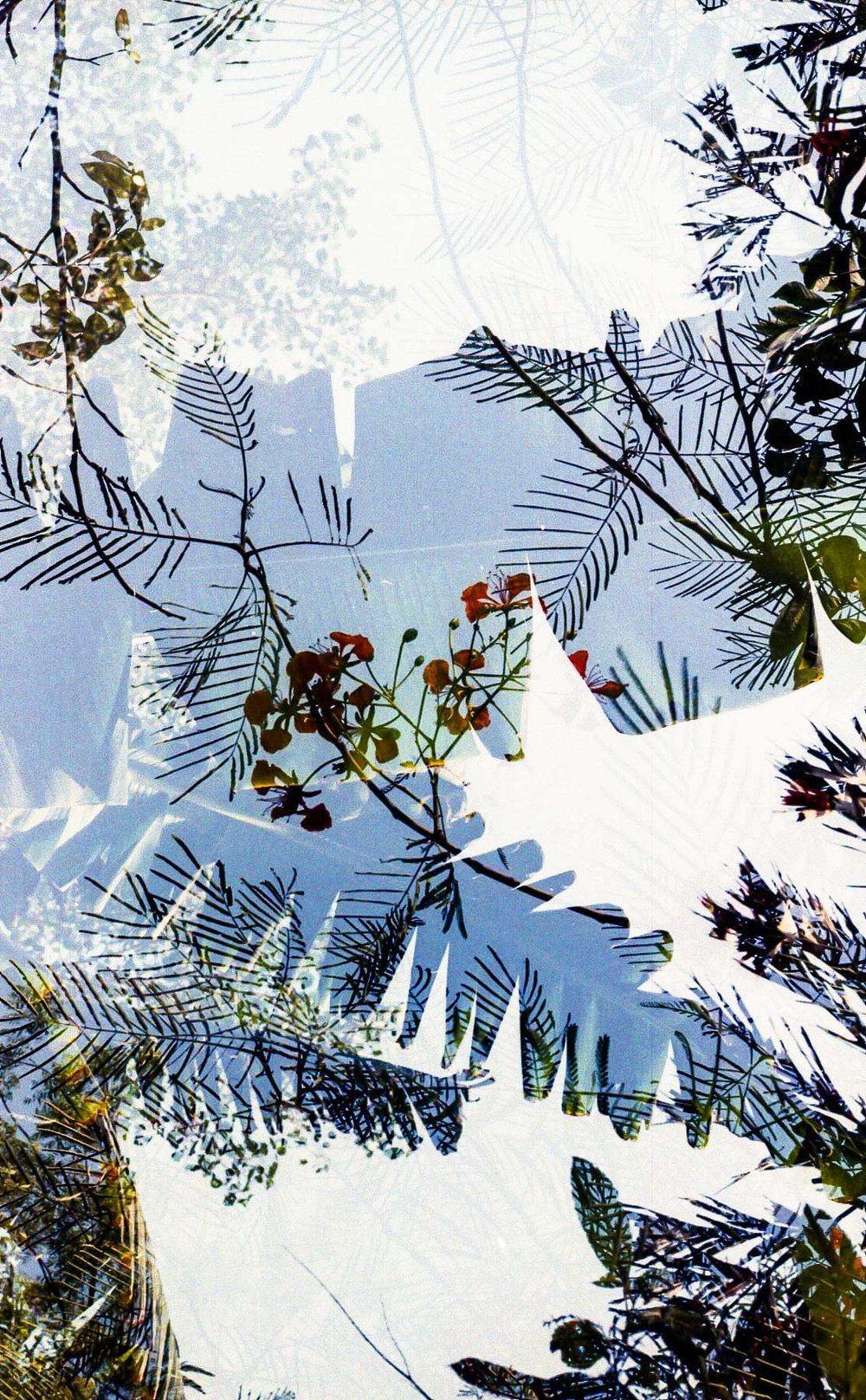 Summer in Double Exposures_2.jpg