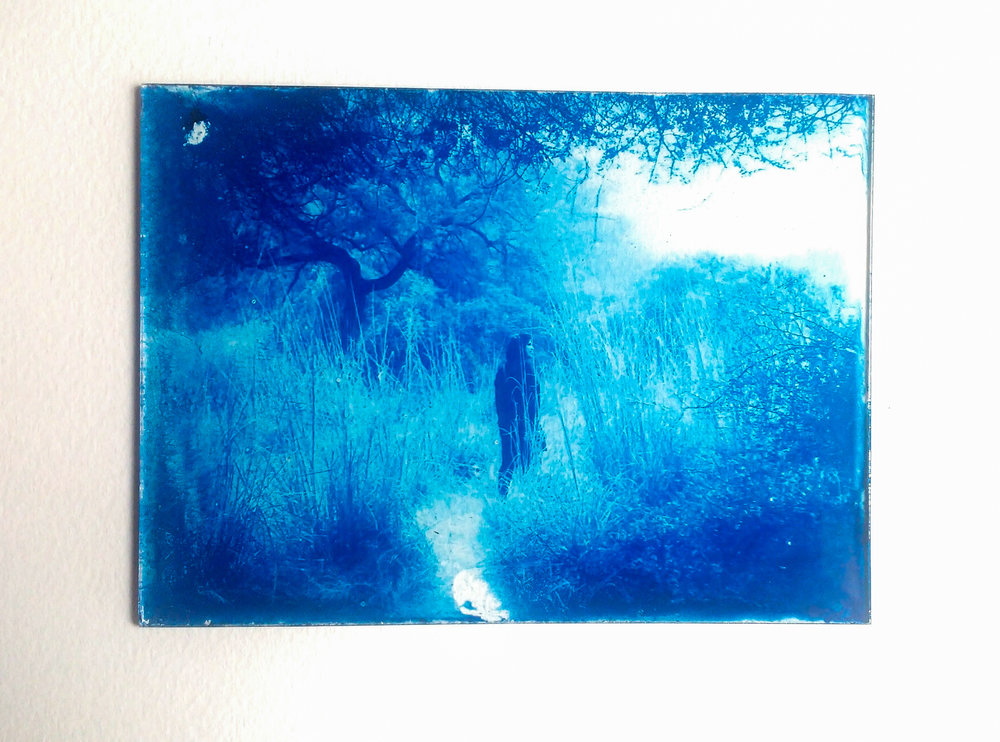 Cyanotype on glass