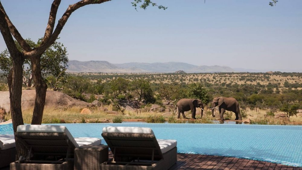 FOUR SEASONS SAFARI LODGE SERENGETI in Africa