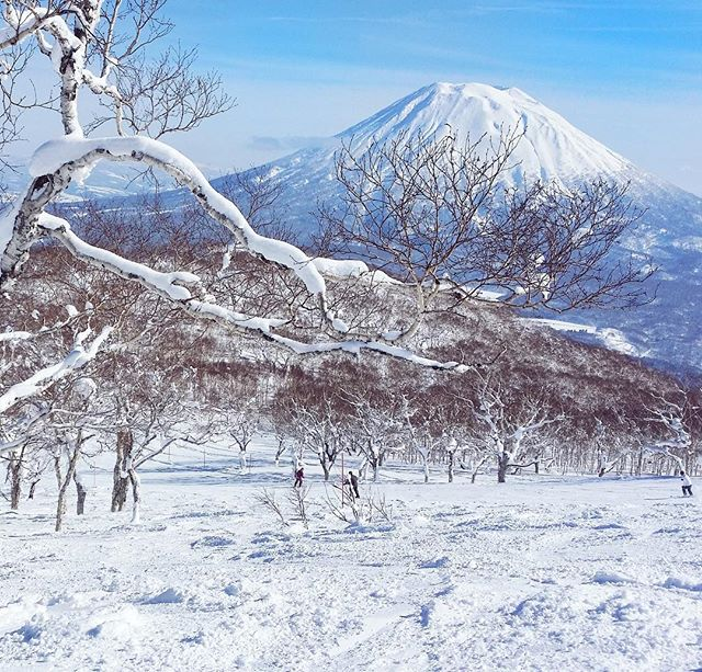 Only just now posting from Christmas in #Niseko. Was lucky to get a few sunny days which is quite unusual in this powder snow heaven. View of Mt. Yotei, the sister volcano of Mt. Fuji.