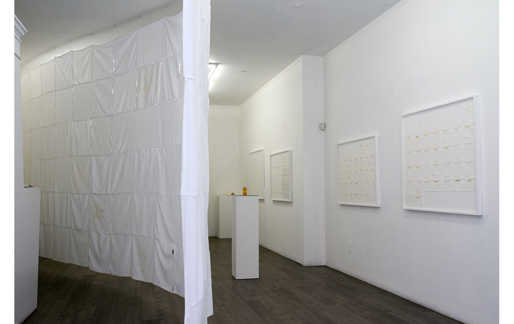 Feed, 2014, installation view at envoy enterprises