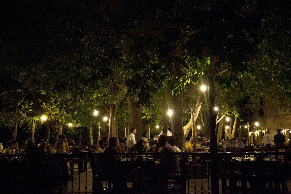 organisch restaurant bij het olijfoliemuseum