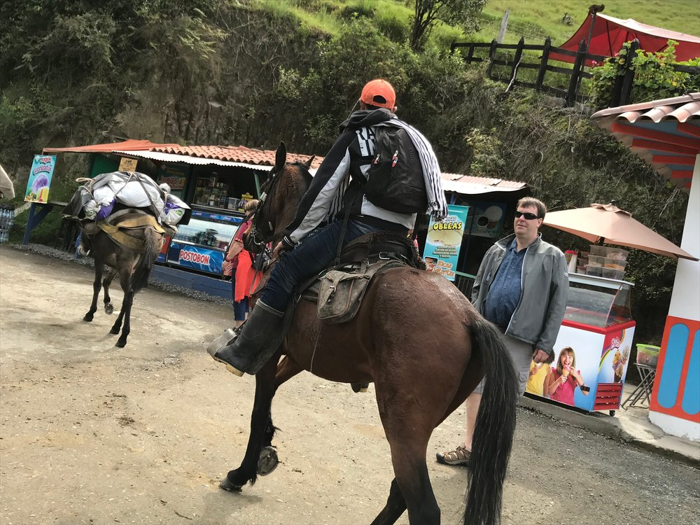 Arriero driving the mules