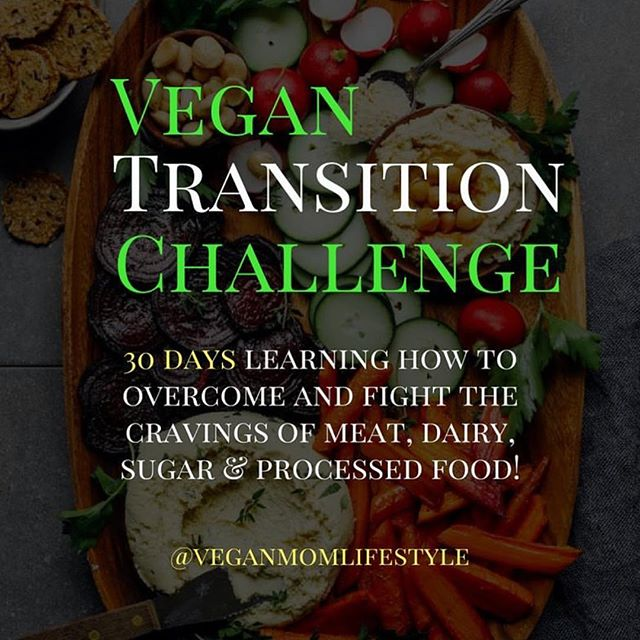 "[Last day to join for $47] If you are ready to make veganism a long term lifestyle choices than this group program will help you do just that.  __ Here's what you'll learn:  6 weeks to Vegan -  Week 1: Overcoming Dairy - understanding calcium and alternatives for dairy Week 2: Overcoming Meat - finding protein and substance in other sources Week 3: Conquering Sugar Addictions - understanding added sugar and high fructose corn syrup Week 4: Eating Whole Foods - decreasing processed food consumption Week 5: Tackling your hygiene products, cleaning supplies, clothing and more… Week 6: Meal Prepping, Cooking and Tutorials  Here's what's included:  Online Accountability Group for 6 weeks Simple Weekly Meal Plans w/Grocery List  Weekly Vegan Recipes + Cooking Tutorials  Weekly Live Q&A with in our Facebook Accountability Group  The Go Vegan Printable Journal The Juice and Smoothie Guides with Recipes  The Vegan Snack Guide with healthy ideas and recipes Tons of new recipes posted right on our accountability group ___ DM me ""vegan transition group"" for the link to join. 30 spaces left to join for $47 vs. $97"