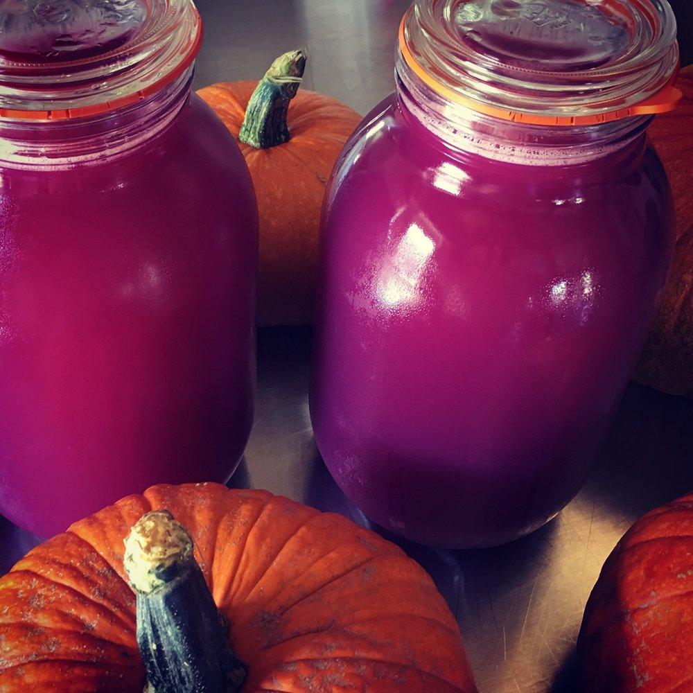 Plum juice and pie pumpkins.JPG