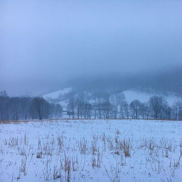 This is what -5F (-24F with windchill) looked like for us yesterday morning. Felt every bit as cold as it looks! . . . . . . . #greenerpasturespa #farmlife #eatlocal #pafarm #pasturedmeat #knowyourfood #winter #polarvortex #coldoutside #pa #pennsylvania #bedfordpa #winterpics #familyfarm #naturalfoods #healthyliving #brrr