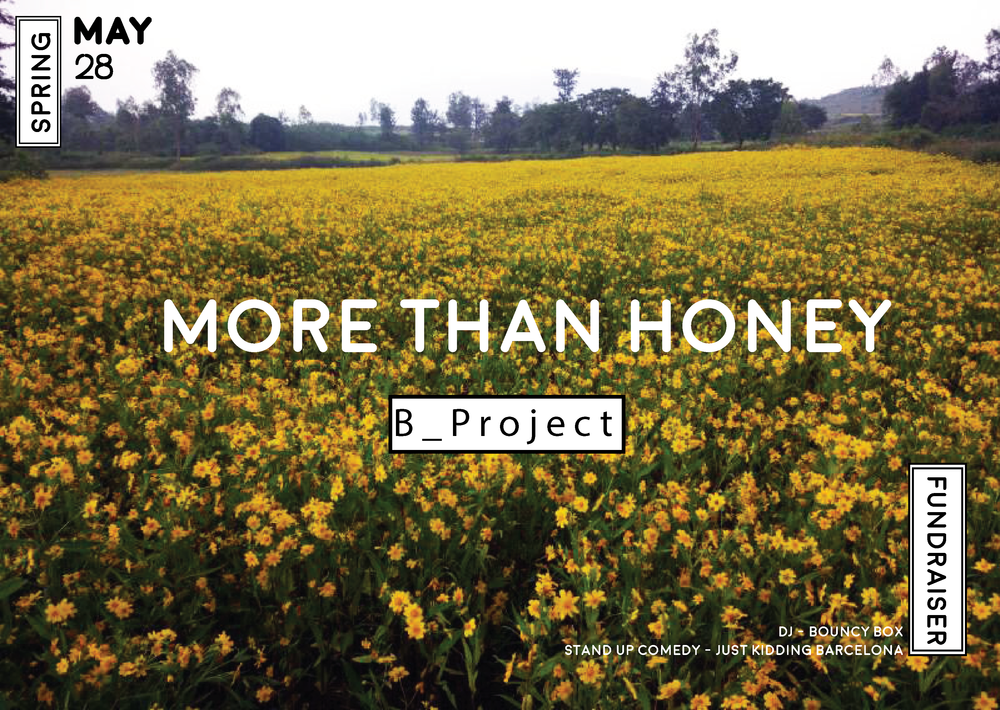 B_Project, More than honey