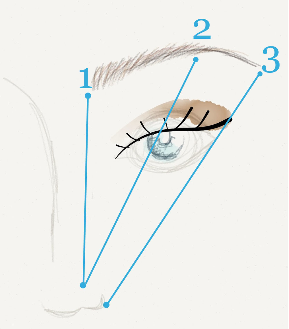 eyebrowmeasure