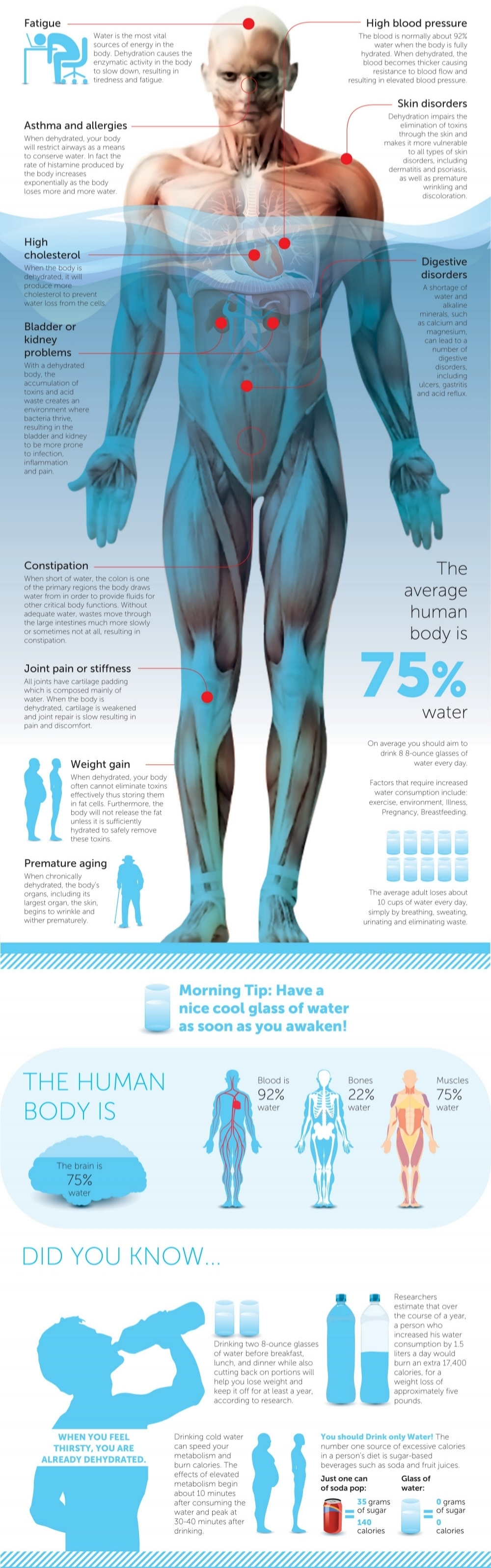 Source: http://www.infographicspedia.com/importance-of-water-that-benefits-our-body/