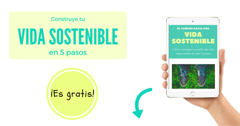 vida sostenible ebook