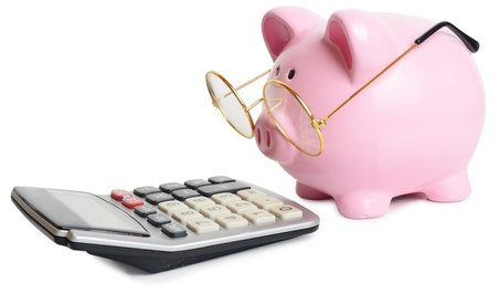 Piggy Bank wearing glasses looking at calculator-paid stock photo.jpg