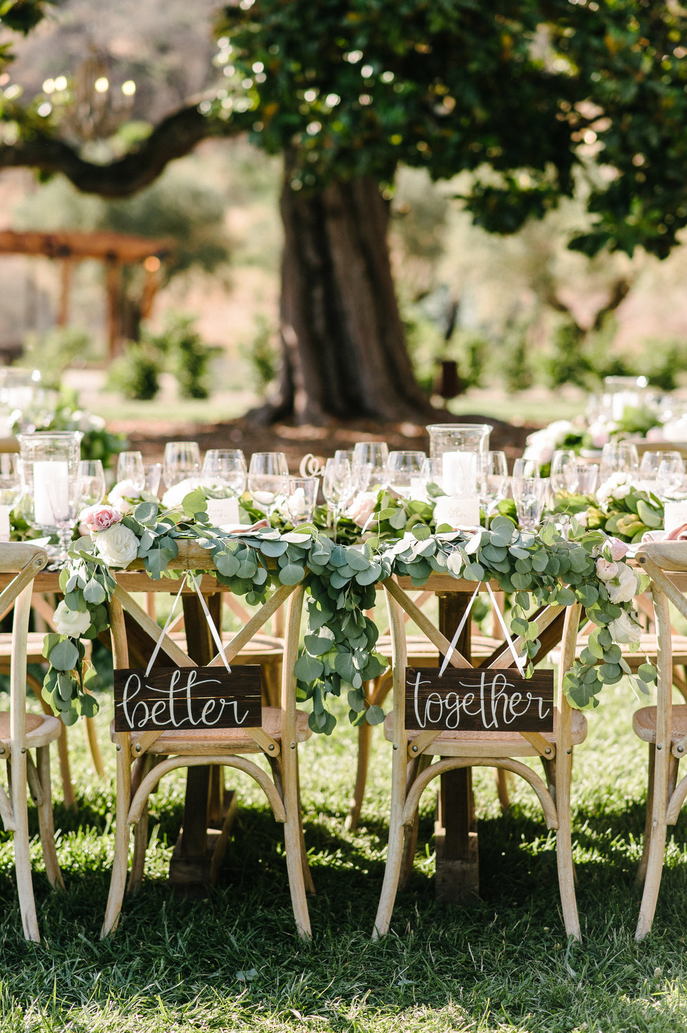 Sonoma County Destination Wedding