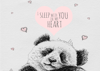 Biro sketch drawing illustration panda sleeping heart