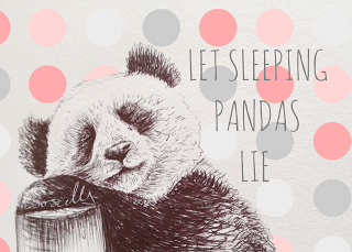 Biro sketch drawing illustration panda sleeping