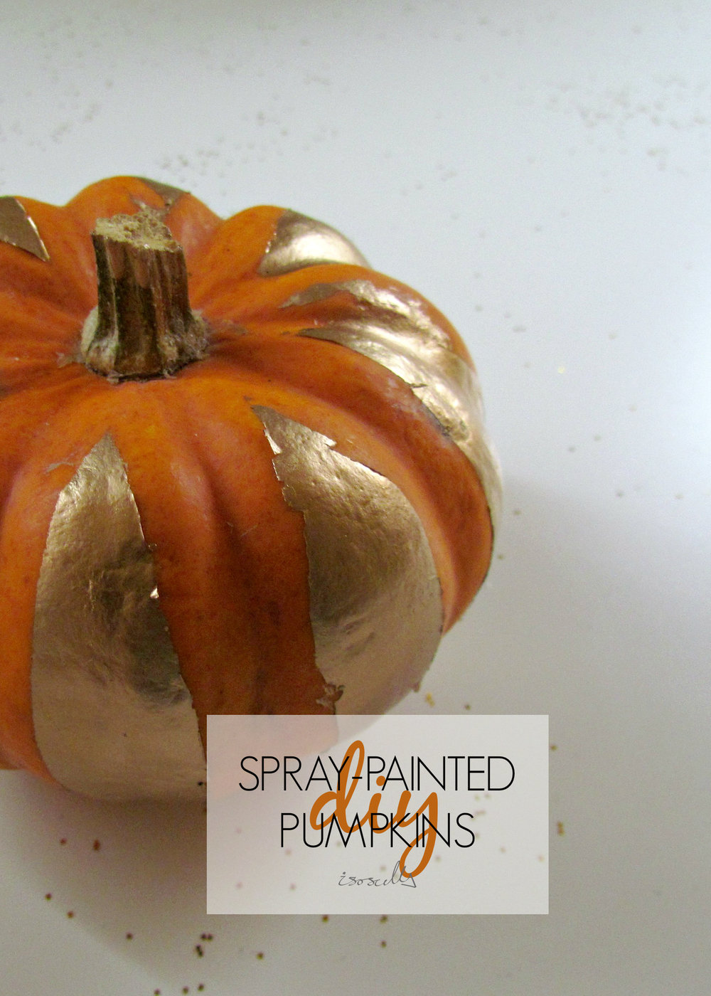 DIY Spray-Painted Pumpkins by Isoscella