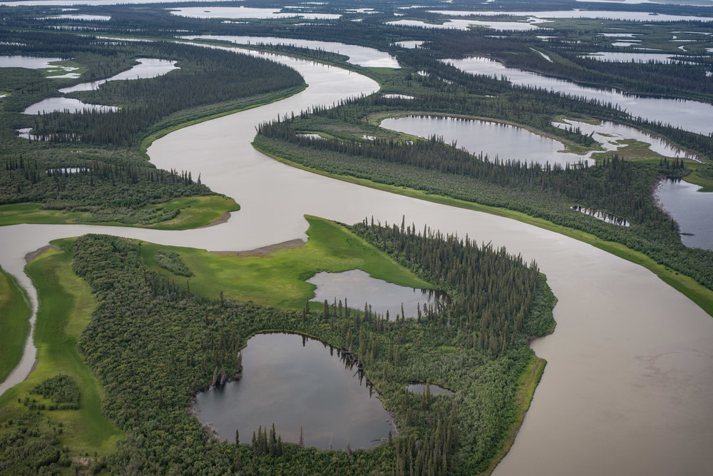 The Mackenzie Delta, NW Territories