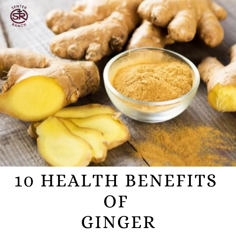 10 Health Benefits of Ginger.png