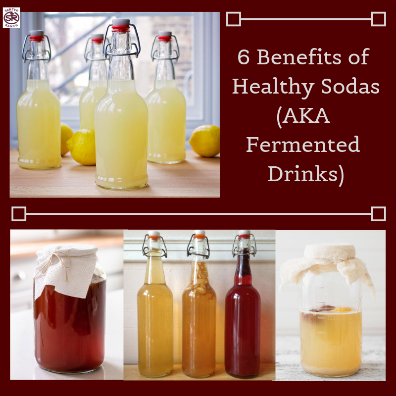6 Benefits of Healthy Sodas (AKA Fermented Drinks).png