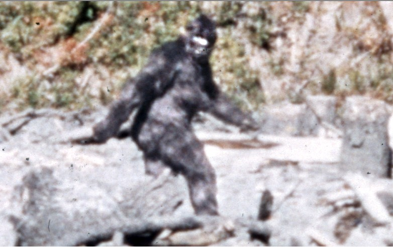 A still from the 1967 Patterson-Gimlin film, considered by many to be the most definitive evidence of Bigfoot's existence.
