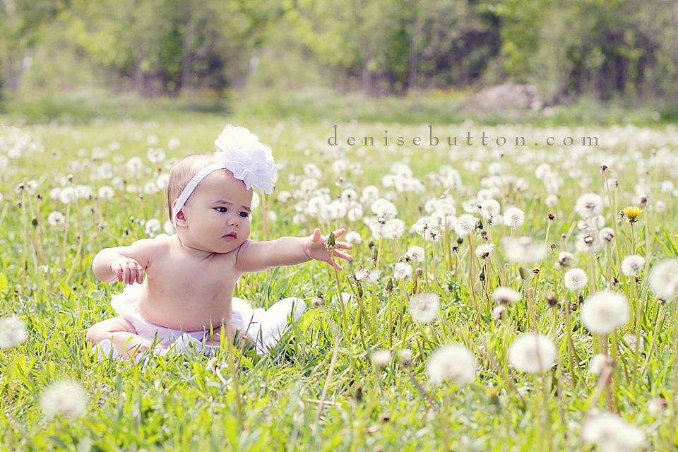 rochester, mi baby photography