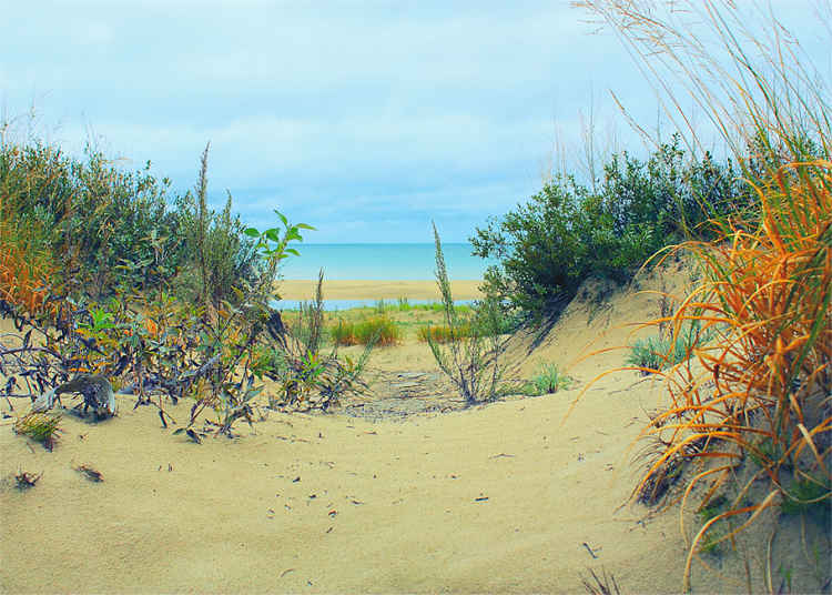 ahhh...summertime     Sauble Beach, Ontario  ©Peg Lariviere Photography  window on the bruce and beyond-   photographic print on Hahnemuhle Photo Silk Baryta digital photo paper  -   size (12 x 18 inches).
