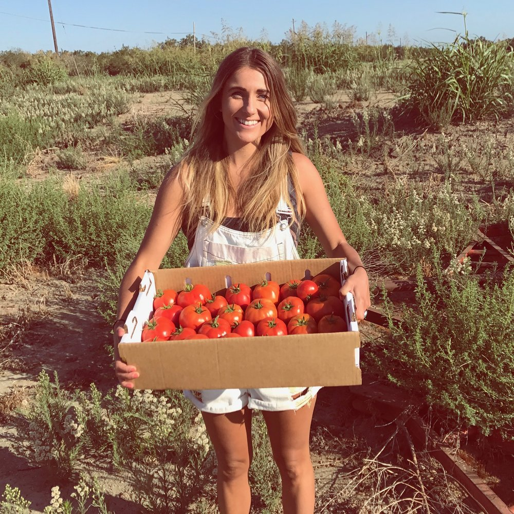 park farm tomatoes