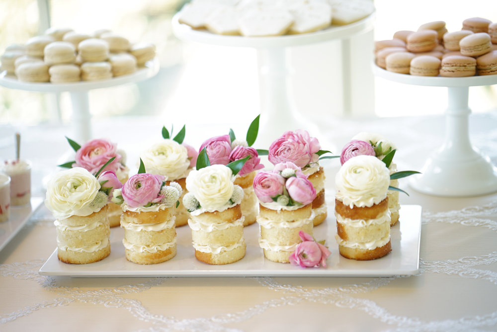 Hemsley 10.2.16 Minikhada mini cakes (1 of 1).jpg