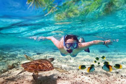 Voyage plongée sous marine