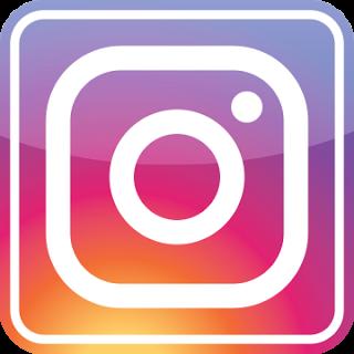 Instagram Larissa Lognay
