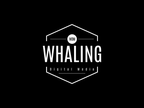 Whaling Digital Media - Brand Identity