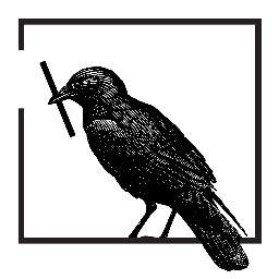 animal bird.jpg