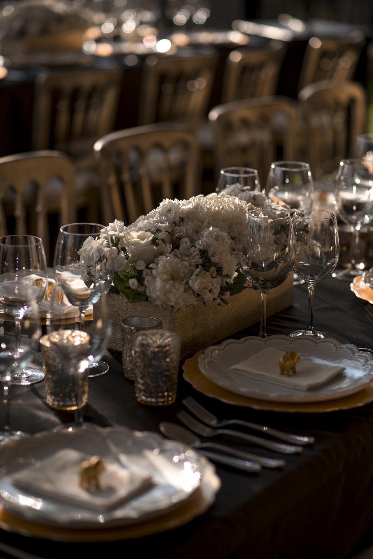 indian_wedding_san_miguel_de_allende_anita_amit (202).jpg