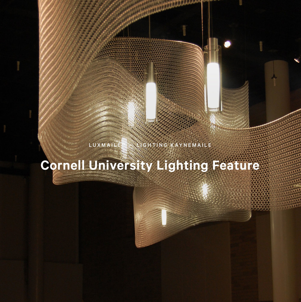 Cornell University Feature Luxmaile Lighting