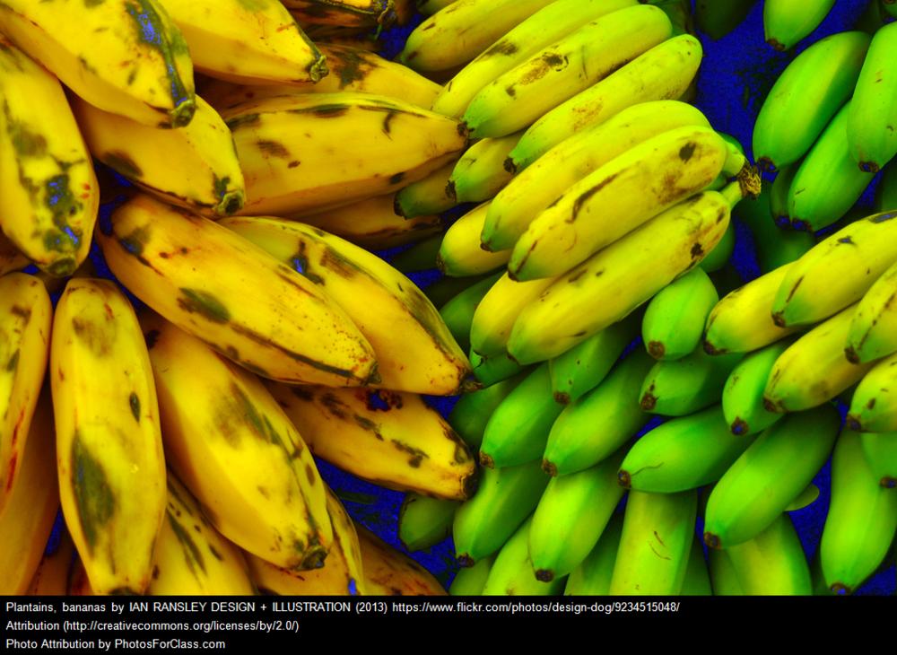 Ayurvedic Diet_Banana
