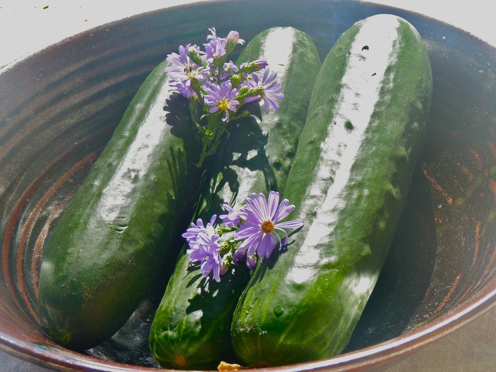 Ayurvedic Diet_Cucumber.jpg